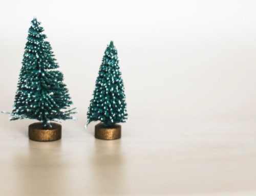 Have Yourself a Minimalist Little Christmas
