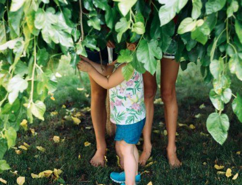How to Raise Environmentally Aware Children, 3 Easy Steps